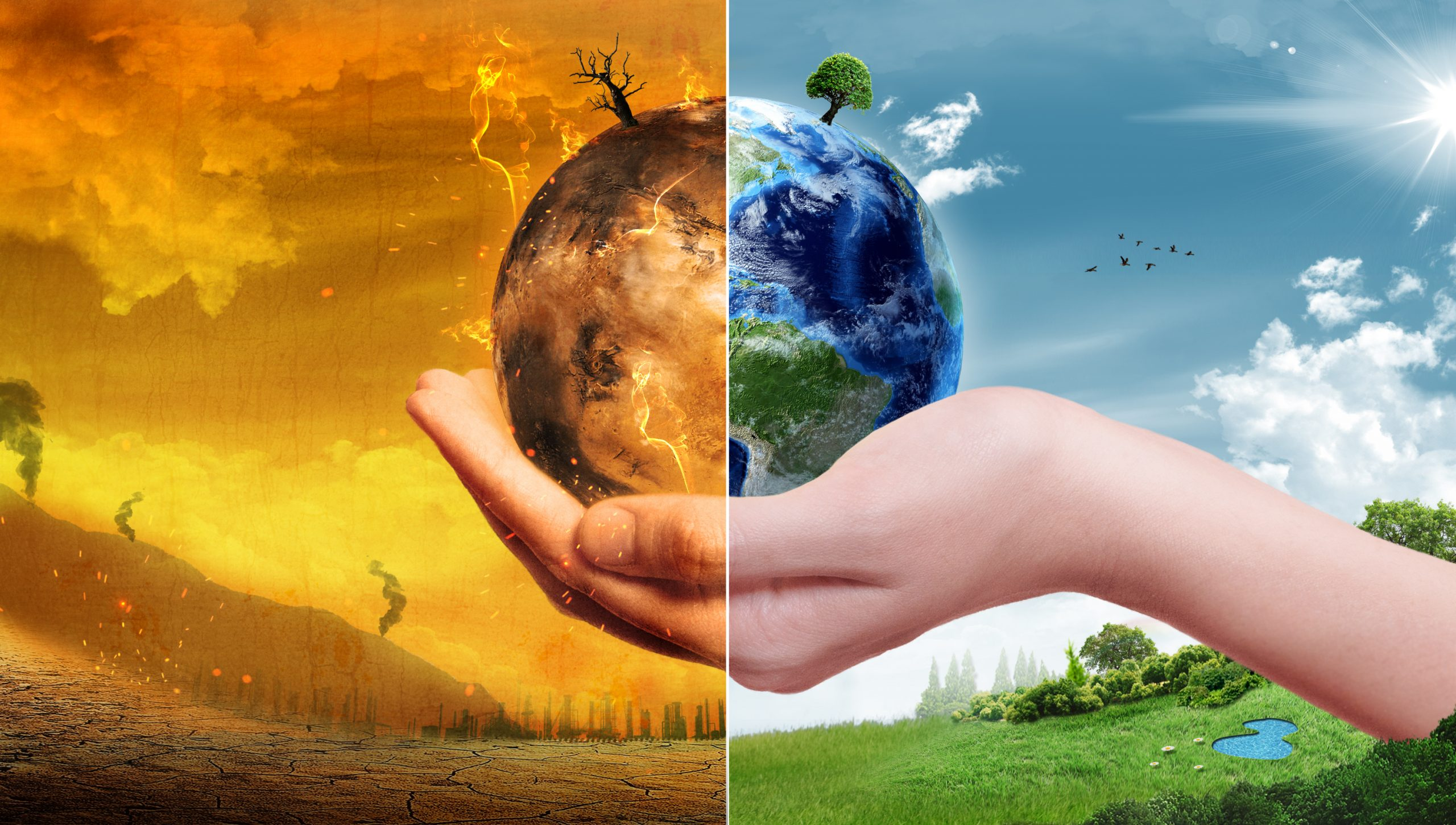 AdaptNow – Changing For Climate